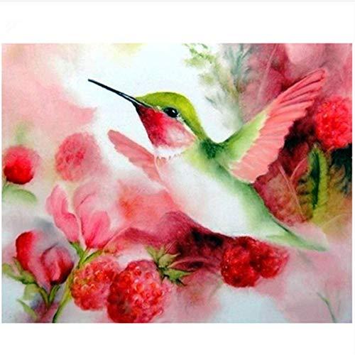 QAZZSF DIY Ölfarbe Foto Ölgemälde Auf Leinwand Kolibri Und Blumen Malen Nach Zahlen Kits Für Kinder Studenten Erwachsene 40X50CM (Kolibri Foto)