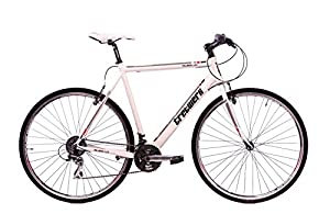 tretwerk DIREKT gute Räder Subs 1.0 V4 28 Zoll Herren Fitnessbike,...