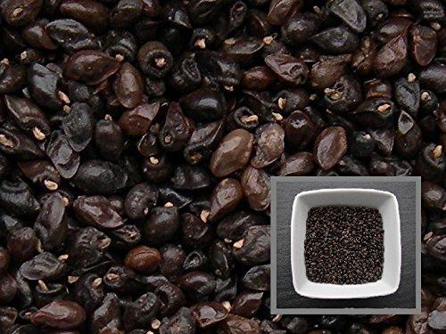 grande-consoude-70-graines-symphytum-officinale-comfrey-engrais-vert-green-manure