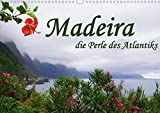 Madeira die Perle des Atlantiks (Wandkalender 2020 DIN A3 quer): Entdecken Sie Madeira. (Monatskalender, 14 Seiten ) (CALVENDO Orte) - M.Polok