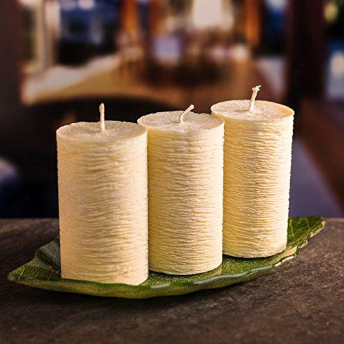 Kerzen Deko Set Romantische Kerzenbeleuchtung: 3 Kerzen in verschiedenen Farben mit langer Brenndauer & dekorativer Palmenblatt Glasunterlage - Palmwachs Blockkerzen für Geburtstage, Feiern & Adventskranz