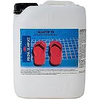 Lapi - 10 kg Alghicida T9 Liquido Non Schiumogeno. Per Contrastare L'Insorgere Delle Alghe In Piscina E Come Trattamento Di Mantenimento. prodotto in Italia da azienda certificata