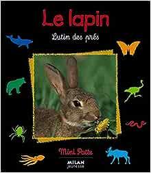 Le lapin. Lutin des prés - Valérie Tracqui