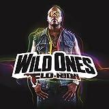 Songtexte von Flo Rida - Wild Ones