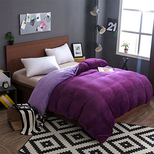 Coral Velvet Bettbezüge,Einzelstück Herbst Winter Zweiseitige Bettbezug Plus SAMT verdickung Plüsch Bettbezug-C 180x200cm(71x79inch) - Solide Tröster Set