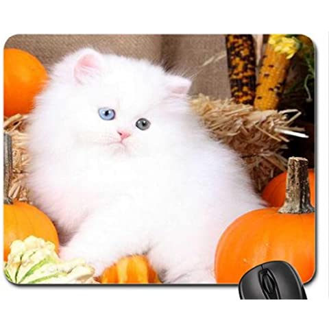 ~Harvest Kitty~ Mouse Pad, Mousepad (Cats Mouse Pad)