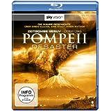 Zeitbombe Vesuv - Das Pompeii Desaster