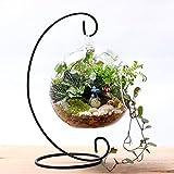 Topfpflanzen Glas Vase Eisen Aufhängen Ständer Halterung, für Home Garten-Ornaments Dekoration Zubehör, Wie abgebildet, Free Size