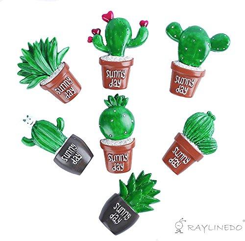 Raylinedo 7pcs Cute Cactus suculentas resina embellishmentst