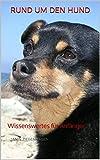 Rund um den Hund: Wissenswertes für Anfänger