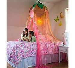 Fairy Lantern Flower Hideaway