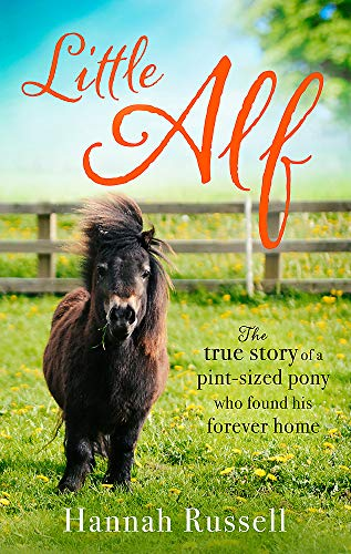 Little Alf: The true story of a pint-sized pony who found his forever home
