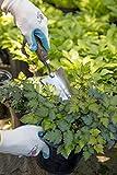 Joseph Bentley Stainless Steel Transplanting Trowel
