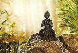 Komar Fototapete Buddha Gallery