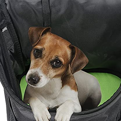 Ewolee Pet Carrier Backpack Breathable Shoulder for Puppy Up To 8lbs Head Out Travelling Pet Bag Free Collapsible Dog… 8