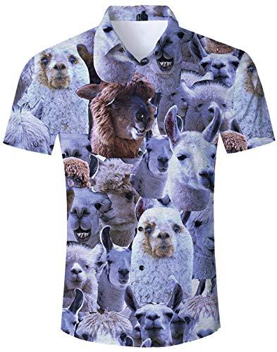 Loveternal Hemd Herren Hawaiihemd Alpaka 3D Druck Kurzarm Hemden Herren Funky Shirt Strandurlaub Sommer Hemd Bunt M -