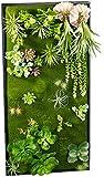 Carlo Milano Pflanzenbild: Vertikaler Wandgarten Klaus mit Deko-Pflanzen, 50x100 cm (Wandbepflanzung)