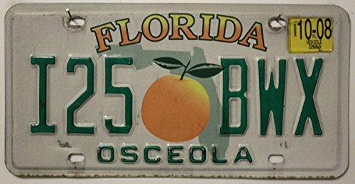 USA Nummernschild FLORIDA ~ US Kennzeichen License Plate ~ Blechschild