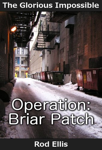 Operation: Briar Patch (The Glorious Impossible Book 1) (English Edition)