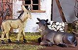 Ochs und Esel 2tlg. Geeignet für 13cm Figuren