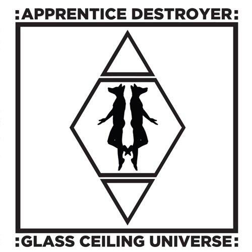 glass-ceiling-universe-vinyl-vinilo