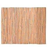 vidaXL Recinzione in Bambù Naturale 100x400 cm Recinto Giardino Privacy Patio