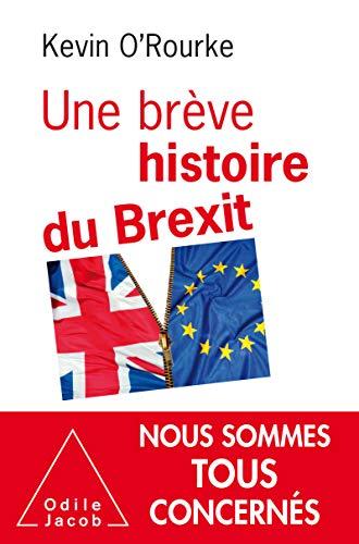 Une brève histoire du Brexit (OJ.ECONOMIE) (French Edition)