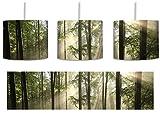 Sonnenstrahlen im Wald inkl. Lampenfassung E27, Lampe mit Motivdruck, tolle Deckenlampe, Hängelampe, Pendelleuchte - Durchmesser 30cm - Dekoration mit Licht ideal für Wohnzimmer, Kinderzimmer, Schlafzimmer