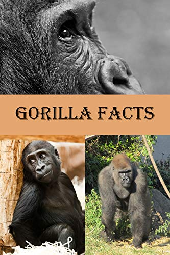 Gorilla Facts: Photobook of Gorilla Fact with real image and Facts that you should know that's so amazing (Fun Facts 1) (English Edition)