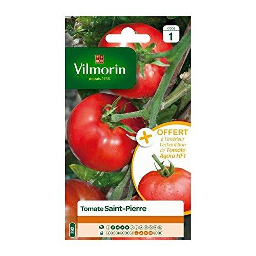 VILMORIN - Sachet Petits Modèles - Tomate Saint Pierre