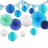 Himeland DIY Papier Pompom Wabenball Set | 15er Mixed Wäbenbälle mit Seidenpapier Blume | Deko Fächer für Geburtstag/Hochzeitsfest/Babyshower/Feier/Party Baby-Dusche/Brautduschen