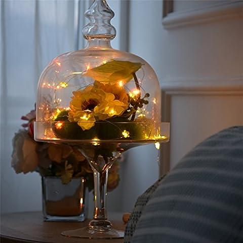 Brinny Guirlandes Lumineuses Fil de Cuivre USB 6m 40 LEDs