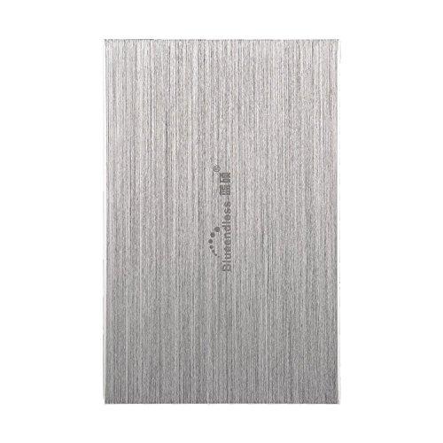 Blueendless externe Festplatte, 2,5 Zoll, 250 GB, USB 2.0, für Desktop oder Laptop silber silber 80 GB (80 Gb Laptop-festplatte)