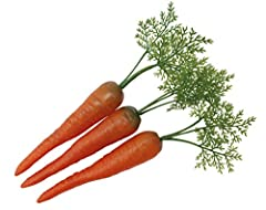 Idea Regalo - Set di 3carote con cappuccio a foglie-hohlattr in plastica, imitazione, finto Food, decorazione, verdura alimentare finta, ottima Idea regalo