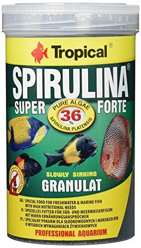 Tropical Super Spirulina Forte Granulatfutter mit 36% Spirulina (Platensis) Anteil, 1er Pack (1 x 1 l)