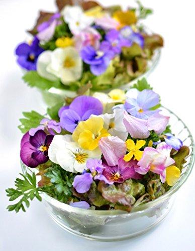 Sortenmischung aus Pflanzen mit essbaren Blüten - samen (Essbare Samen)
