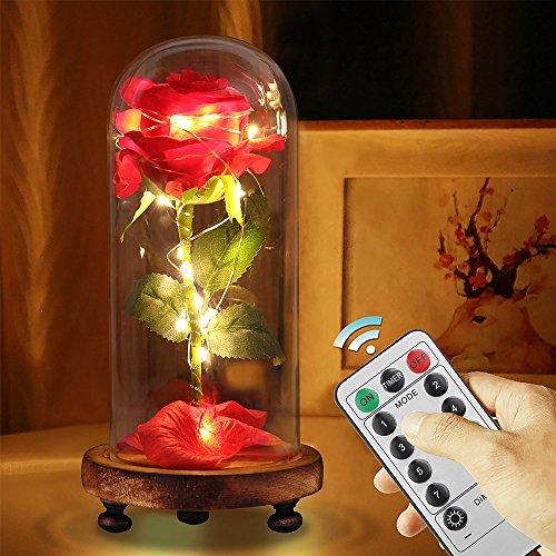 Die Schöne und das Biest Rose Lampe Kit,LED Nachtlicht Deko für Weihnachten Geschenk um Valentinstag Hochzeitstag Geburtstag (bunte mit Fernbedienung(8 Mode))
