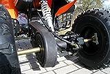 Kinder Quad S-10 125 cc Motor Miniquad 125 ccm orange Warriorer - 8