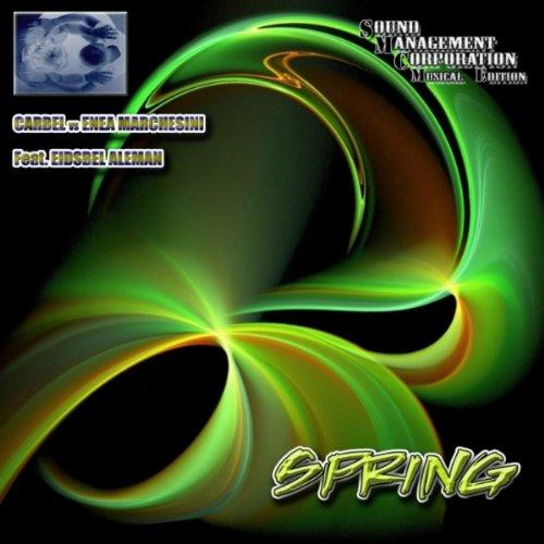 Spring (Original Edit Mix)