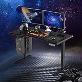 FLEXISPOT Gaming Desk Bureau Debout Bureau réglable en Hauteur électriquement à 3...