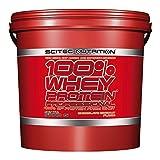 Scitec Nutrition 100% Whey Protein Professional protéine choco-coco 5000 g