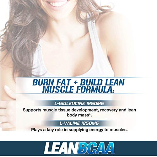 51vC3xlLK7L. SS500  - Evlution Nutrition LeanBCAA, BCAA's, CLA and L-Carnitine, Stimulant-Free, Recover and Burn Fat, Sugar and Gluten Free…