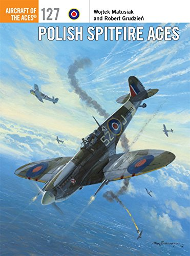 Polish Spitfire Aces (Aircraft of the Aces)