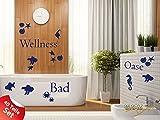 Graz Design 770082_57x57_053 Wandtattoo Set Badezimmer Spruch Wellness Oase mit Muscheln Seesterne 57x57cm Hellblau