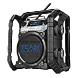 PerfectPro TEAMPLAYER Outdoorradio Baustellenradio mit FM