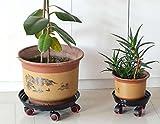 &QQ Bandeja móvil de la parte inferior de la olla de flor, estante de la flor, agua del almacén, rueda del freno, base bajo cuidado, , 25cm , black