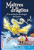 Maîtres des dragons, Tome 07 - À la recherche du dragon de Foudre