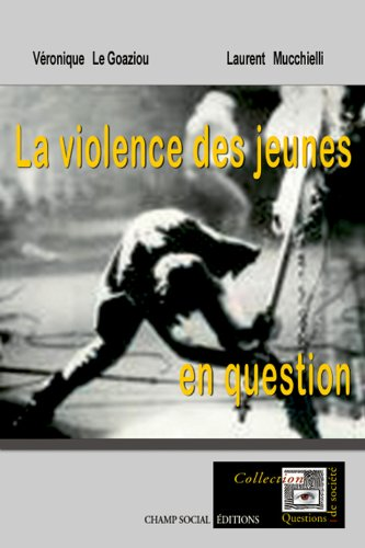 la-violence-des-jeunes-en-questions