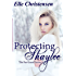 Protecting Shaylee (The Fae Guard Book 1)