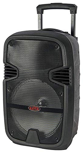 Semcon Pro Audio Trolley Speaker 12""